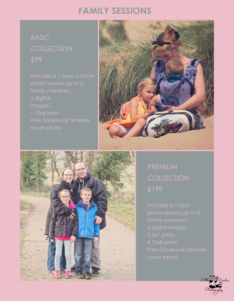 2017 pricing FamilySession